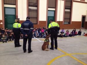 2015-02-27 Gossos policia (15)