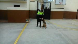 2015-02-27 Gossos policia (2)