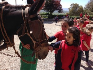 2015-05-08 Sant Mateu de Bages (10)