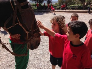 2015-05-08 Sant Mateu de Bages (13)