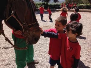 2015-05-08 Sant Mateu de Bages (14)