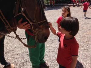 2015-05-08 Sant Mateu de Bages (15)
