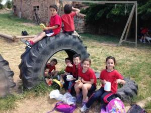 2015-05-08 Sant Mateu de Bages (19)