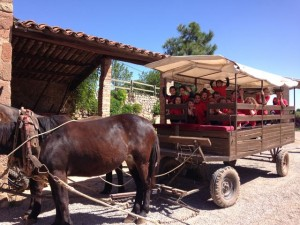 2015-05-08 Sant Mateu de Bages (5)