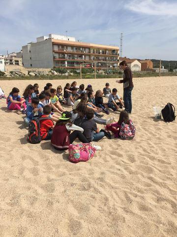 """La classe de 5è participa al taller """"Sorra, sal i sol. Els tresors vius de les nostres platges""""."""